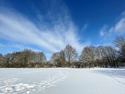 Schnee 4.jpg©Alpheideschule