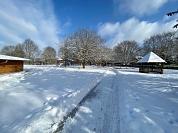 Schnee 6.jpg©Alpheideschule